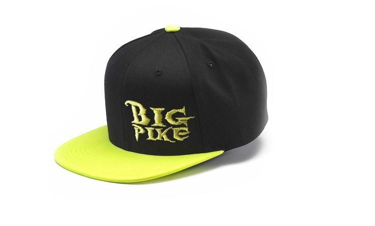 Picture of Leech SnapBack