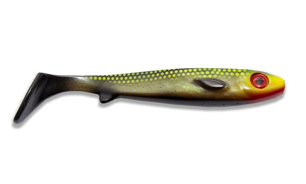 Picture of Flatnose Shad - Jungle Tench
