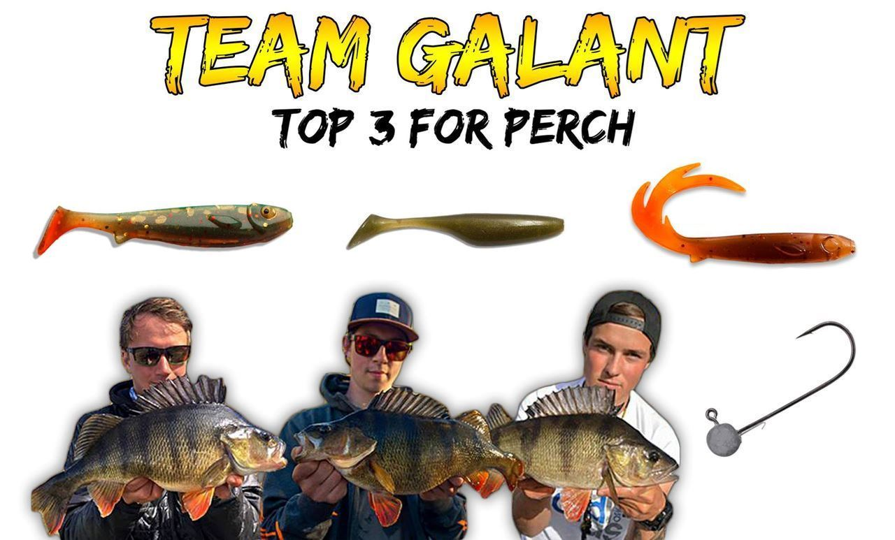 Picture of TEAM GALANT - Perch bundle