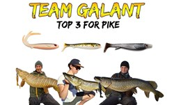 Picture of TEAM GALANT - Pike bundle