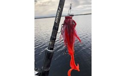 Picture of Fishingset Baitcasting Pike (Lizzard X and Instinct X7)