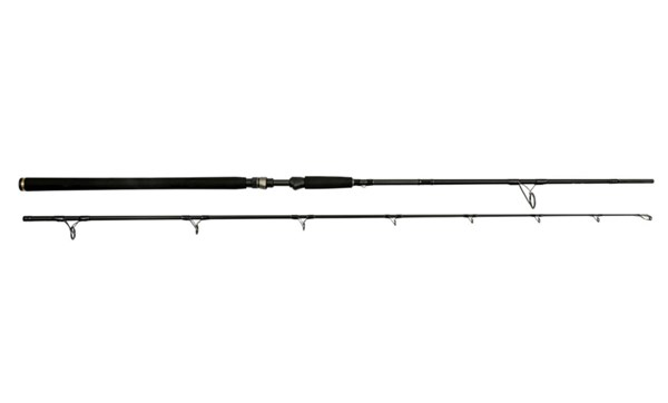 """Picture of Westin W3 Powercast 2nd 7'9""""/233cm 3XH 60-150g 2sec"""
