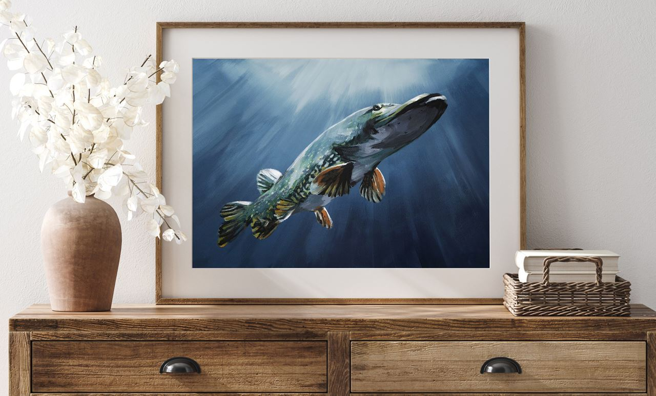 "Picture of Fine Art Print by Tomas Hammar 50x70cm ""Pike before the Bite"""